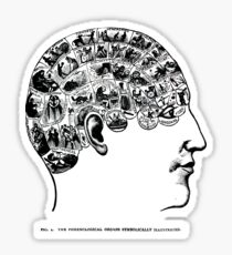 phrenological organs symbolically - gift idea Sticker