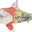 Florida Shark by Statepallets