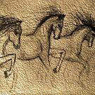 horses by tulay cakir