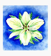White Lily - Watercolor Flower Painting Photographic Print