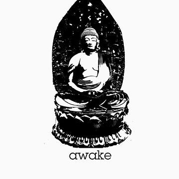 Awake by fludvd