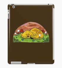 Ferald Sleeping iPad Case/Skin
