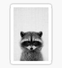 raccoon headshot Sticker