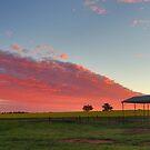 Marrar Sunrise by Alyssa Passlow