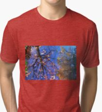 Reflections of Nature Tri-blend T-Shirt