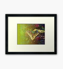 Expired Film Butterfly Double Exposed Framed Print