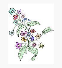Doodle Bouquet Photographic Print