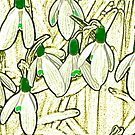 Snowdrops by Avalinart