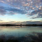 Dangars Lagoon by Kitsmumma