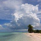 Cayo Guillermo beach by zumi