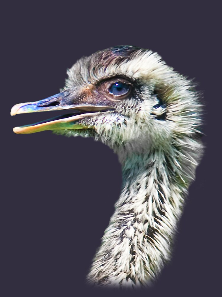 Baby Ostrich T-Shirt by DeloresKnowles