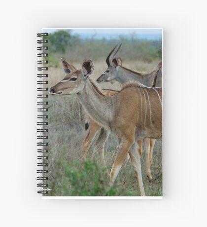 AS GRACEFUL - THE FEMALE KUDU - Tragelaphus strepsiceros Spiral Notebook