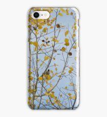 Boreal Chickadee in a Yellow Tree iPhone Case/Skin