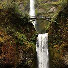 Multnomah Falls- Oregon by Larry Costales