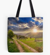 tree on hillside path through  meadow in foggy mountain at sunset Tote Bag