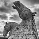 The Kelpies by M S Photography/Art
