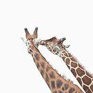 Giraffe Love by kaotic-shell
