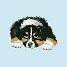 Black Tri Australian Shepherd Puppy  by Barbara Applegate