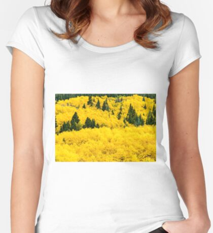 Buried In Gold Women's Fitted Scoop T-Shirt