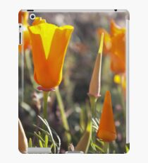 Annual Blooms iPad Case/Skin