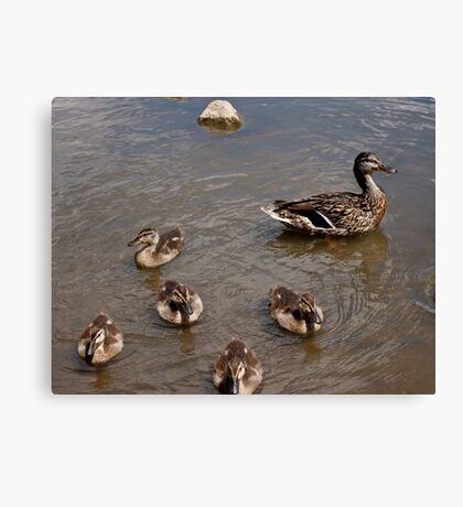 Adventures with Mama Canvas Print