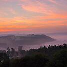 Misty Sunrise by Chris Thaxter