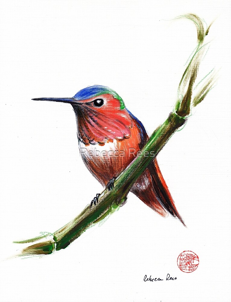 Little Hummer - Hummingbird prisma pencil & acrylic painting by Rebecca Rees