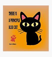 CAT PRINCIPLE Photographic Print