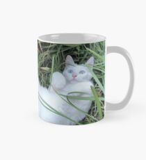 Boo the Deaf Kitty in the Grass Mug