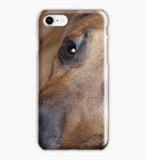 Bored Pooch iPhone Case/Skin