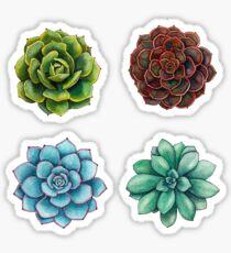Sukkulenten-Aufkleber-Set Sticker