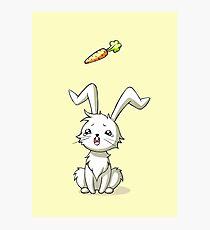 Bunny Carrot Photographic Print
