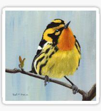 Blackburnian Warbler  Sticker