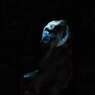 Humanity - Mountain Gorilla in Moonlight by Skye Ryan-Evans