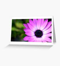 Closeup flower Greeting Card
