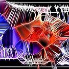 Red Diamond by Ashoka Chowta