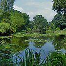 Reaseheath College Lake by AnnDixon