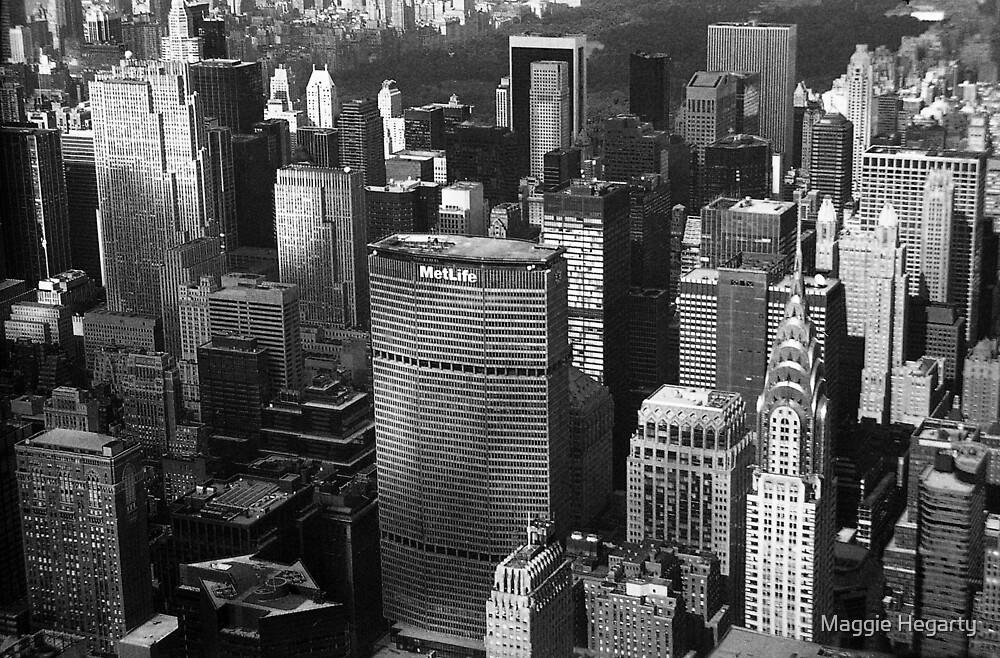 New York, New York by Maggie Hegarty