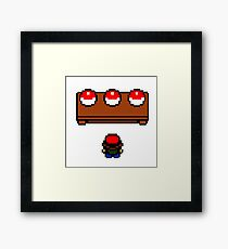 The  Pokemon Choice Framed Print