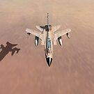 Desert Storm Tornado low level by Gary Eason