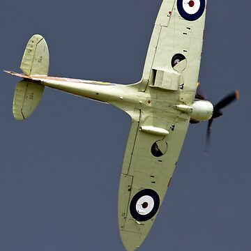 Supermarine Spitfire Eliptical Wing by criso