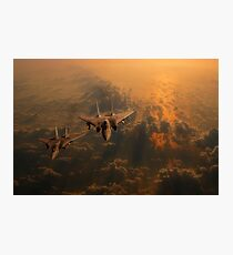 Tomcats Photographic Print