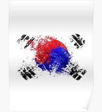 korean flag brush Poster