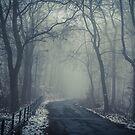 Nebel  von Iridescentcloud