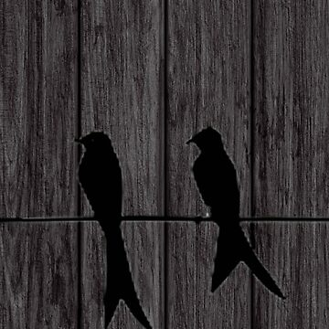 birds on a wire by cellorart
