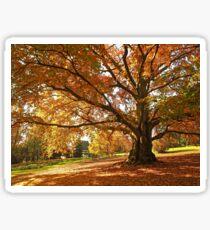 Autumn in the Park Sticker