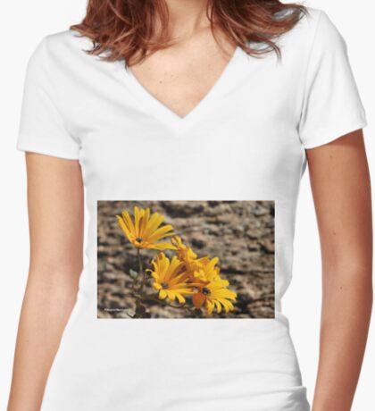 Arctotis cuprea – ASTERACEAE – Gousblom Women's Fitted V-Neck T-Shirt