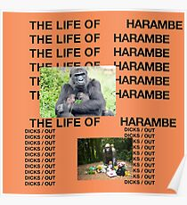 The Life of Harambe Poster