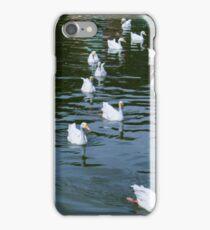 Pond ducks iPhone Case/Skin
