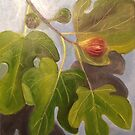 Figs on Tree by Maureen Sparling